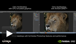 Photoshop video che presenta il confronto tra CPU e GRID K2 con Citrix XenDesktop