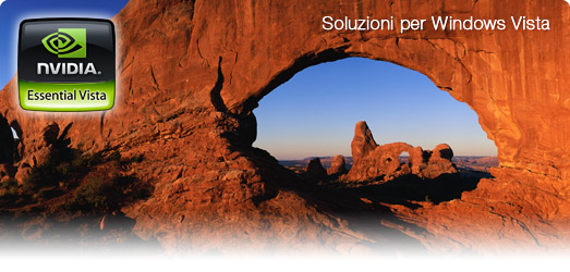 Soluzioni NVIDIA per Windows Vista